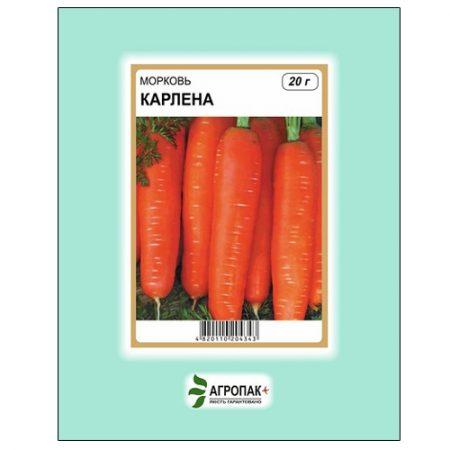 Пізньостиглий високоврожайний сорт моркви Карлена.