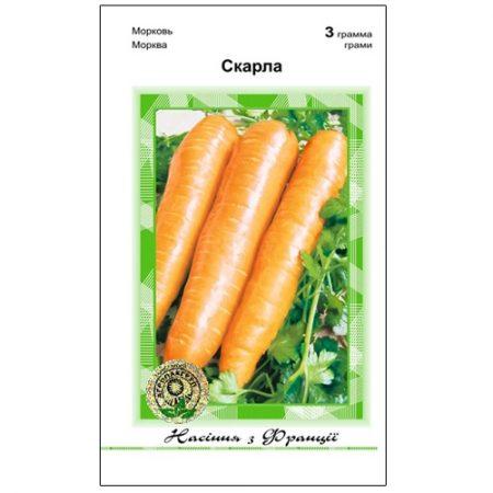 Скарла - пізній сорт моркви.