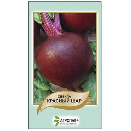 Урожайный сорт свеклы Красный шар.