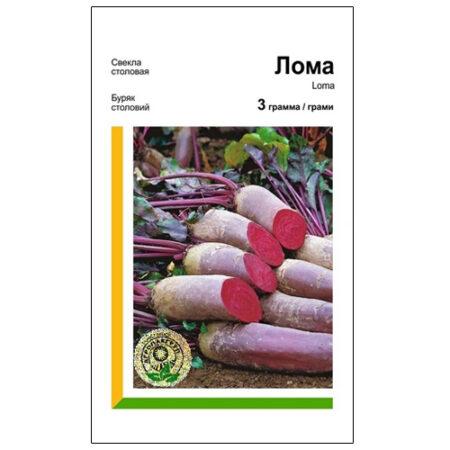 Буряк столовий Лома - високоврожайний сорт