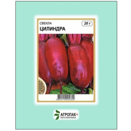 Высокоурожайный сорт свеклы Цилиндра.
