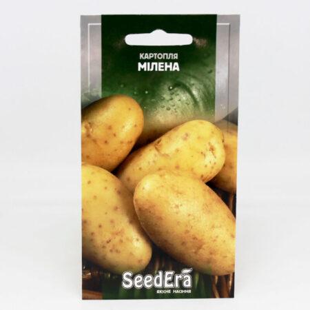Картопля Мілена