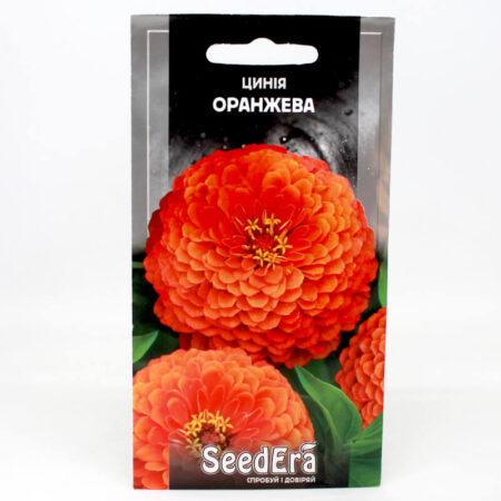 Цинния высокорослая элегантная оранжевая