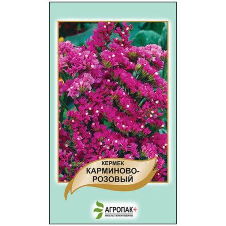 Кермек виїмчастий Карміново-рожевий